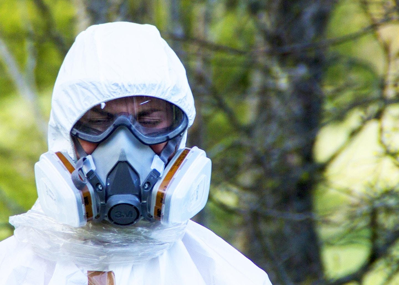 Asbest in der Wohnung